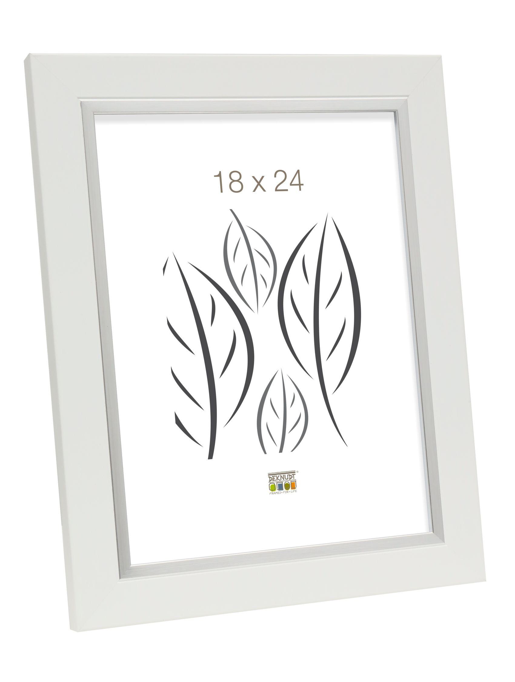 fotolijst wit met zilverbies, kunststof S45VK1
